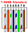 T-568B Standard